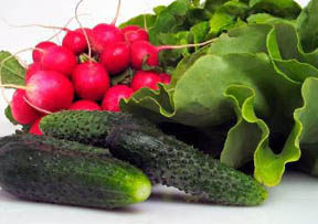 Forbidden Foods On Hcg Diet